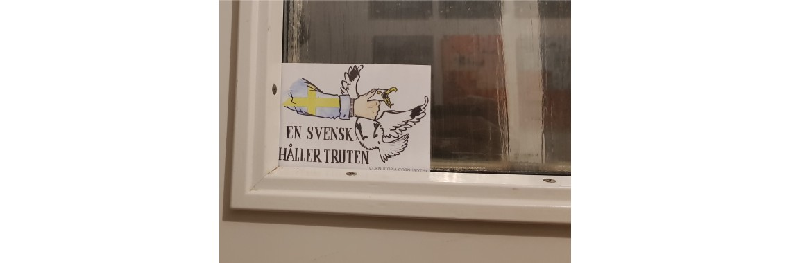Sticker on window