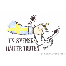 """Poster """"A Swede Holds The Gull"""""""